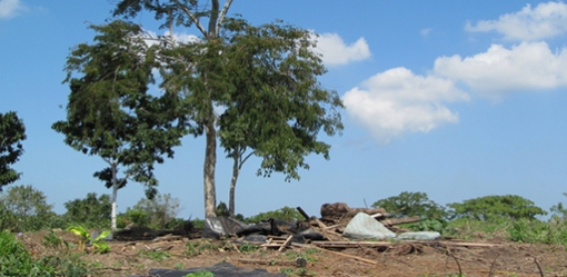 The remains of forced eviction on the El Tamarindo land