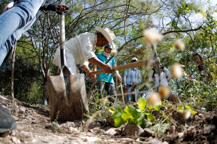 People with missing relatives dig in an area under investigation by a forensics team, near mass graves discovered in October, in La Joya on the outskirts of Iguala, Guerrero state