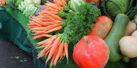 658537_3_e9cb_des-legumes-provenant-de-l-agriculture_9e2cb5e305f5633e0104007faecc44c2