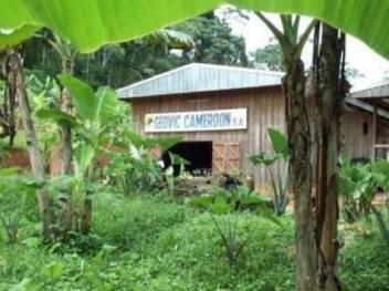 cameroun-geovic-mining-corp